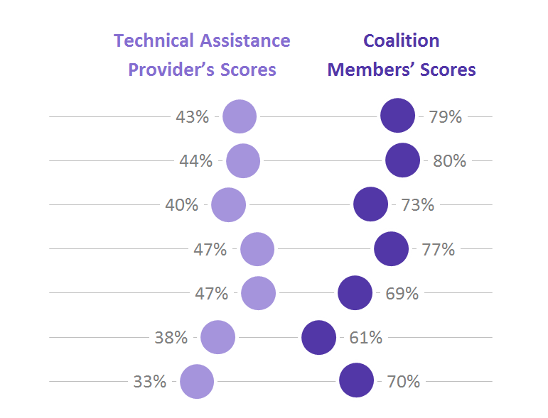Sample results from Coalition Assessment Tool